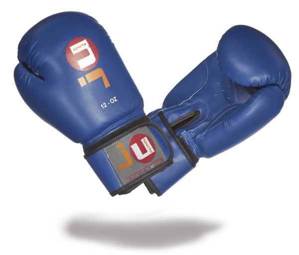 Boxhandschuhe Training blau-altes Modell