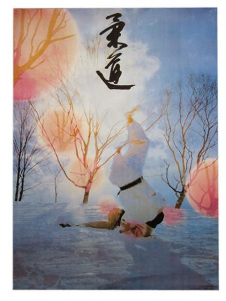 Poster Judo striking