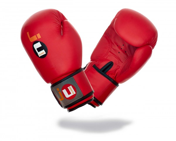 Boxhandschuhe Training rot-altes Modell